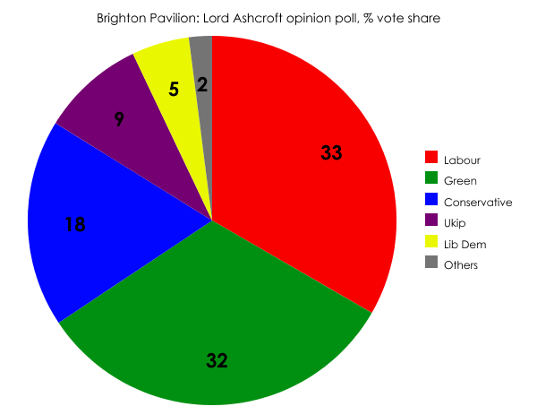 Brighton Pavilion opinion poll