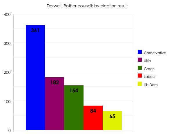 Rother by-election